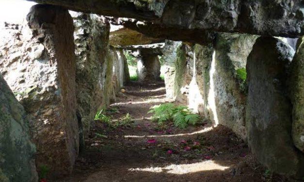 Kisah Kyai Pamungkas: Ziarah Mistis Di Makam Puyang Rambutan